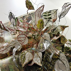 IBuenz_Woodlands5 (Isabell Buenz) Tags: paperart papersculpture bookart bookpages booksculpture exhibition commission scotland edinburgh isabellbuenz ibuenz buenz recycled closeup nature flowers paperflowers origami thread stitching solublefabric papercutting