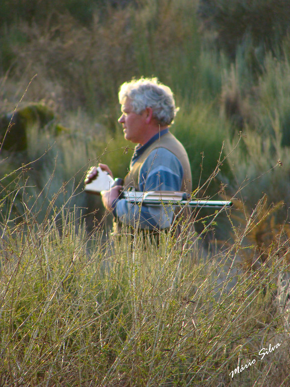 Águas Frias (Chaves) - ... caçador solitário ...