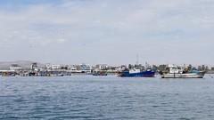 fishing boat in Paracas Pisco Peru (roli_b) Tags: fishing boat boats boot ship vessel barco pescadores pescador mare mar trailer schiff fischerboot anchor anker peru 2018 travel viajar turismo tourism