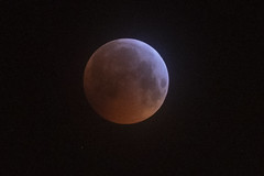 Blood Moon (Paul O'B) Tags: blood moon eclipse red lunar