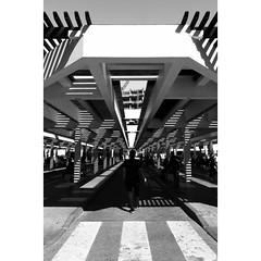 Untitled (navith_k) Tags: monochromephotographer monochromestreets decisivemoment streetphotographyforlife wideangleshots middayshot streetphotographydubai canonshots dubai peopleonthestreets leadinglines streetsandbeyond highcontrast lightandshadow everydayblackandwhite blackandwhitestreets blackandwhite noir monochrome everybodystreet everybodystreets everydaystreets lifeisstreet streetphotographymagazine streetphotography streetphotographers streetphotographer streetpeople streetphoto