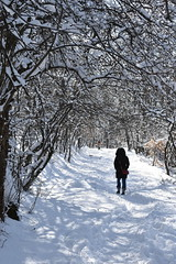 Walkpath (nevejasper) Tags: snow bulgaria mountain