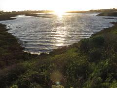Windswept salt pan shallow water (stonebird) Tags: windsweptwaves ballonawetlandsecologicalreserve saltpan areab february img8667