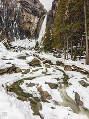 Lower Yosemite Falls 1 (lycheng99) Tags: loweryosemitefalls yosemitefalls yosemite yosemitenationalpark yosemitevalley waterfall nature landscape trees mountains streams longexposure silky falls nationalpark nationalgeographic people winter snow
