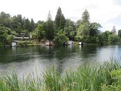 Boathouses at Okere Falls (Kevin Fenaughty) Tags: plant outdoor lake rotoiti boathouse tree water reeds okerefalls rotorua newzealand