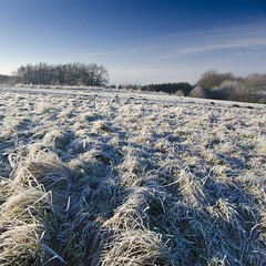 A cold and frosty morning ❄️☀️☃️ (Martin Bärtges) Tags: westerwald deutschland germany blau himmel blue sky sonnenschein sonne sun sunshine schnee snow outside outdoor drausen winter nikonphotography nikonfotografie d7000 nikon landschaftsfotografie landschaft landscape landscapelovers