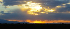 Blue and Gold (Patricia Henschen) Tags: alamosacolorado southriverroad alamosa colorado backroads rural sunset ranch mountains clouds sanjuan
