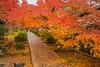 Autumn Scenery at Ikkyū-ji Temple, Kyōtanabe, Kyōto-fu-Japan. (KyotoDreamTrips) Tags: buddhism ikkyūji japan kyoto kyōtanabe shūonanikkyūji zen autumn autumnphotography もみじ 一休寺 京田辺市 紅葉 酬恩庵一休寺 kyotanabeshi kyōtoprefecture jp