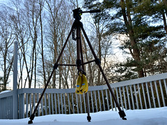 (Hanging) On a Tripod (065/365) (robjvale) Tags: 365the2019edition 3652019 day65365 06mar19 project365 nikon d3200 banana tripod hereios wah werehere