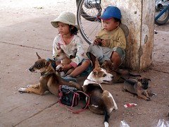 Cambodia 2004 - Kids and dogs (sharko333) Tags: travel voyage reise asia asien cambodia kambodscha kampuchea ព្រះរាជាណាចក្រកម្ពុជាprĕəhriəciənaacakkampuciə street people child dog girl boy konicaminoltadimagez3 sisophon