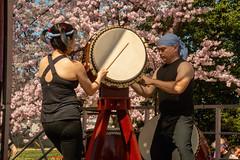CherryBlossomDC2019-669.jpg (carlton.colter) Tags: kizuna cherryblossomdc taiko taikotakeover sakurataikofest washington dc usa
