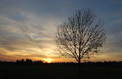 O du selig Licht der Welten (amras_de) Tags: sylterstrase wiesbaden dotzheim sauerland abend vespre vecer aften evening vespero ilta vespere sera vesper vakaras avond kveld seara forenicht kväll aksam sonnenuntergang escureixito ocàs soumrak solnedgang sunset ocaso päikeseloojang auringonlasku coucherdesoleil zalazaksunca tramonto soloccidens saulelydis riets zonsondergang soleglad zachódslonca pôrdosol apus scurata dayset západslnka solnedgång