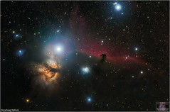 The Horsehead Nebula in Orion (The Dark Side Observatory) Tags: tomwildoner night sky deepsky space outerspace skywatcher telescope 120ed celestron cgemdx asi190mc zwo astronomy astronomer science canon canon6d deepspace guided weatherly pennsylvania observatory darksideobservatory stars star tdsobservatory backyardeos earthskyscience orion horseheadnebula horsehead nebula