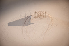 Christiane Löhr - Kleine ovale Haararbeit 2009 crine di cavalo aghi 39x28x15 cm (anto291) Tags: vetrinedilibertà lalibreriadelledonne fabbricadelvapore arte artecontemporanea art contemporaryart
