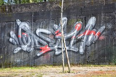 Braga - street art (jaime.silva) Tags: braga portugal portugalia portugalsko portugália portugalija portugali portugale portugalsk portogallo portugalska portúgal portugāle painting paint spraypaint spray spraypainting muralpainting mural pinturamural streetart streetartist graffiti graf urban urbanart arteurbana odeith
