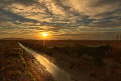 Atardecer entre los campos de arroz, en el delta del ebro (danypolo) Tags: sunset atardecer deltadelebro deltebre tokina tokina1116 nikond7200 sun landscape roz agriculture longexposure haidafilter haida