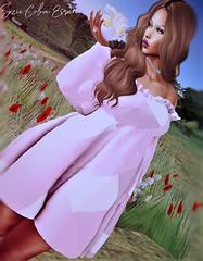 BLOG #248 (Suzie Coba Esquire) Tags: dress dream couture hair tableau vivant barbara fashion style spring blog blogger model virualstyle secondlife women wear