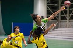 ASMB - Lisieux #01 (Positif+) Tags: vert woman women femme girl fille hand ball sport