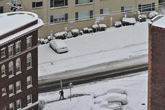 Seattle Snowmageddon 2019 22 (C.M. Keiner) Tags: seattle washington usa city cityscape skyline mountains pacific northwest puget sound snow blizzard winter storm urban