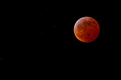 Lunar Eclipse of 2019 (josesuro) Tags: 2019 afsvrzoomnikkor200400mmf4ifed florida lenses moon nikond850 tierraverde astrophotography eclipse