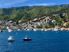 Avalon, Catalina Island, CA (- Adam Reeder -) Tags: boat y2019 m03 d15 lat330 lon1180 avalon los angeles california united states photo jpg apple iphone x catalina island ca