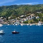 Avalon, Catalina Island, CA thumbnail