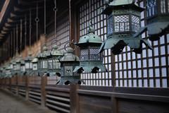 Lanterns (fredMin) Tags: lantern nara japan bokeh asia mitakon fujifilm xt2 35mm