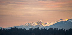 Flying East (s.d.sea) Tags: totem lake kirkland eastside mountains mountain range cascades winter sunrise morning washington washingtonstate wa pnw pacificnorthwest pentax k5iis 55300 layers foothills landscape terrain