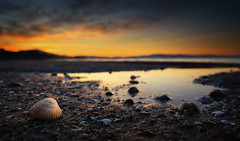 Rianxo (Noel F.) Tags: sony a7r a7rii ii fe 24 14 gm tanxil rianxo barbanza ria arousa ameixa galiza galicia sunrise mencer