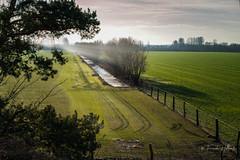 Brandenburger Land (Frank Hellmiß2010) Tags: acker zaun himmel grün sonnenstrahlen sony ilce7rm2 fe 24240mm f3563 oss