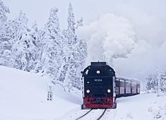 Brocken Railway (Michal Jeska) Tags: brocken railway schierke eisenbahn brockenbahn lokomotive harz snow winter outdoor outside germany locomotive canoneos5dmarkii canon5dmarkii canonef70300mmf456isiiusm