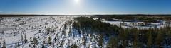 2019_02_16---13_55_00---DSC06344_panor (paavoeensalu1) Tags: mukri bog wetland estonia winter snow tower