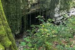 Vorontsovskaya-Cave-Воронцовская-пещера-Сочи-7068