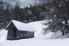 The mountain lodge (N.Hell) Tags: lodge house landscape wide angle winter snow mountain view scene beauty relaxing tree nature strom dreamy cosy bokeh dark mood contrast hut shed shelter sky cloud scenery flurry blizzard