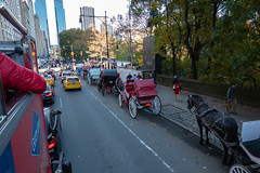 Red and Yellow (Jocey K) Tags: sonydscrx100m6 triptocanadaandnewyork hoponhopoffbus trees autumn centralpark sky architecture buildings cars cabs taxi bus street road people horse horseandcarriage newyorkcity