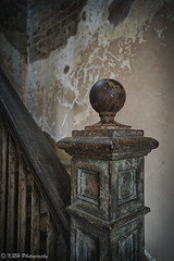 Bruised Bannister (KRHphotos) Tags: swannanoapalace architecture abandoned virginia stilllife