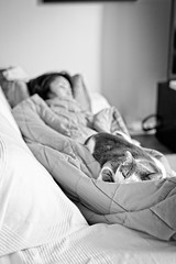 Nap time (Alberto Vanoli) Tags: catsdogs animals bw bokeh life home