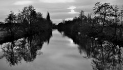 Ombres et reflets  -  Shadows and reflections (Philippe Haumesser (+ 7000 000 view)) Tags: rivière river canal arbres trees forêt forest forêts forests eau water reflets reflections nuages clouds noiretblanc blackandwhite monochrome nikond7000 nikon d7000 reflex 2019 169 panorama alsace france basrhin 67