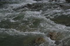 Lumikellukesemets (anuwintschalek) Tags: nikond7000 d7k 18140vr austria niederösterreich lichtenwörth mets wald forest lumikellukesemets schneeglöckchenwald kevad frühling spring march 2019 jõgi river fluss leitha vesi water wasser vool