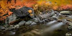 Paradise Found (Don's Photostream) Tags: flow 15secf22 iso100 nikon river stream sierra california fallcolors 247028