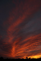 Sunset 3 5 19 #24 (Az Skies Photography) Tags: sun set sunset dusk twilight nightfall sky skyline skyscape rio rico arizona az riorico rioricoaz arizonasky arizonaskyline arizonaskyscape arizonasunset cloud clouds red orange yellow gold golden salmon black march 5 2019 march52019 3519 352019 canon eos 80d canoneos80d eos80d canon80d