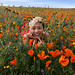 Shooting with JuJu Chan - Antelope Valley Poppy Reserve, California
