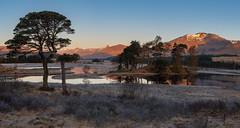Loch Tulla (jasty78) Tags: lochtulla blackmount sun sunrise gold golden goldenhour landscape light glow hill loch mountain winter bridgeoforchy glencoe scotland nikond810 1635mm 29mm nikkor1635mm nikkor1635mmf4