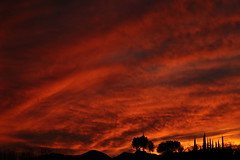 Sunset 3 5 19 #36 (Az Skies Photography) Tags: sun set sunset dusk twilight nightfall sky skyline skyscape rio rico arizona az riorico rioricoaz arizonasky arizonaskyline arizonaskyscape arizonasunset cloud clouds red orange yellow gold golden salmon black march 5 2019 march52019 3519 352019 canon eos 80d canoneos80d eos80d canon80d