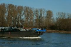 TMS EILTANK 9 (Lutz Blohm) Tags: tmseiltank9 tankschiff speyer gütermotorschiff binnenschifffahrt rhein rheinschifffahrt binnenschiffe fluskilometer402 rheinzuberg sonyfe24105mmf4goss sonyalpha7aiii