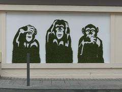 Mister Ride - Les 3 singes de la Sagesse (Thethe35400) Tags: artderue arteurbano arturbain arturbà arteurbana calle fresque grafit grafite grafiti graffiti graffitis graff mural murales muralisme plantilla pochoir stencil streetart schablone stampino tag urbanart wall végétal vegetal green singe singes monkeys