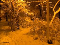 Winter in Bazilescu Park, Bucharest (cod_gabriel) Tags: winter iarna iarnă bazilescu parc park bazilescupark parculbazilescu bucuresti bucureşti bukarest boekarest bucharest bucarest bucareste romania roumanie românia snow zapada zăpadă night noapte