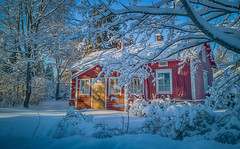 Santa's Home? (Topolino70) Tags: winter snow old house nostalgy tree garden red door santa claus home