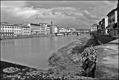 ponte di santa trinita (imma.brunetti) Tags: firenze toscana italia biancoenero arno fiume acqua cielo nuvole lungarni panorama centro ponti vegetazione santatrinita torri