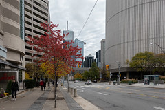 One Stands Out (Jocey K) Tags: sonydscrx100m6 triptocanada ontario canada autumn toronto city streets people highrise clouds sky buildings architecture cars trees autumncolours